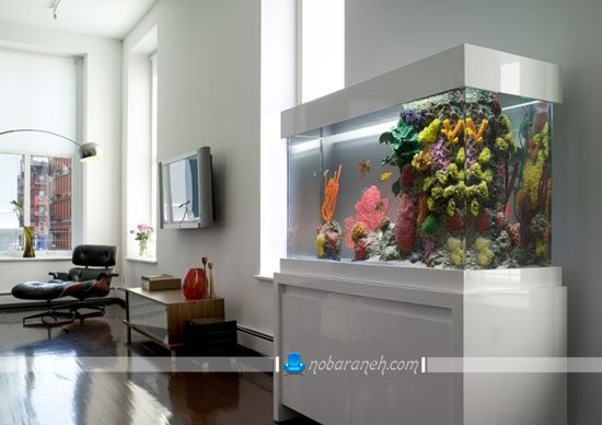 آکواریوم خانگی مناسب تزیین دکوراسیون اتاق نشیمن / عکس