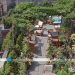 باغچه پشت بام
