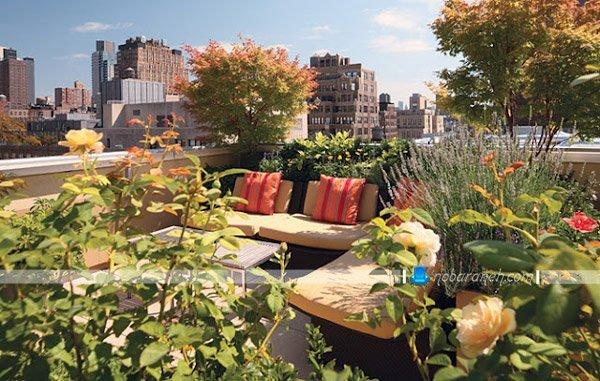باغ بام با فضای نشیمن در پشت بام کوچک، طراحی فضای سبز و نشیمن در پشت بام و تراس های کوچک