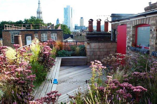 روف گاردن ساده در پشت بام کوچک خانه شخصی، طراحی باغ بام در پشت بام کوچک