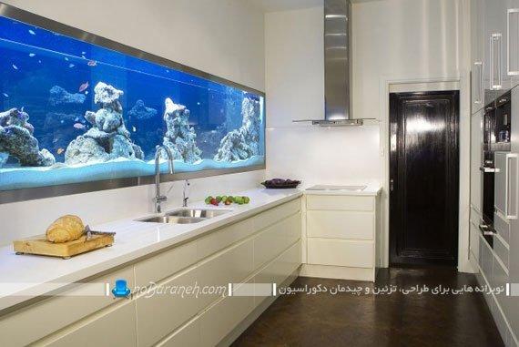 طراحی و جاسازی آکواریوم خانگی در دیوار آشپزخانه / عکس