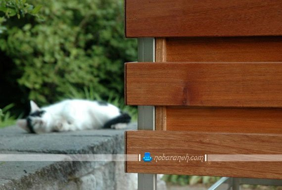 اتاق دوش چوبی برای استخرهای روباز / عکس