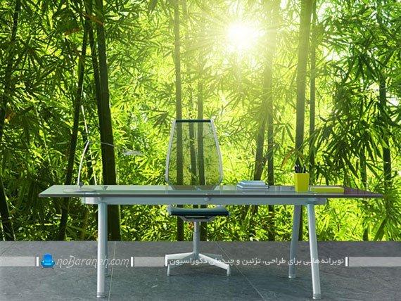 مدل پوستر منظره سرسبز جنگلی