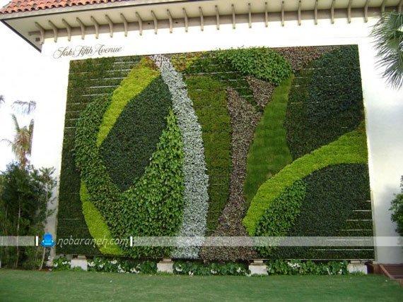 تزیین دیوارهای بیرونی و دیوار حیاط با گیاهان سبز