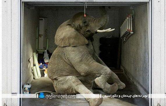 استیکر زیبای طرح فیل چسبانده شده روی در پارکینگ