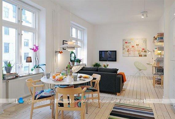 تقسیم فضای اتاق پذیرایی به دو بخش نشیمن و ناهارخوری / عکس