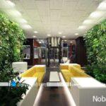 تزیین نما ساختمان و دیوارهای خارجی با گیاهان چسبنده