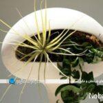 مدل گلدان های مدرن سفالی و چوبی، سفیر طبیعت در خانه