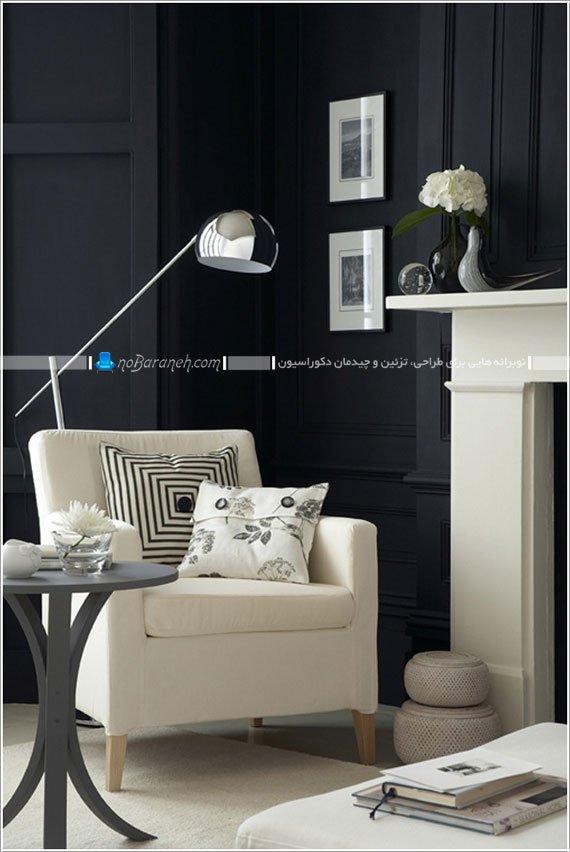 طراحی دکوراسیون داخلی با سیاه و سفید / عکس
