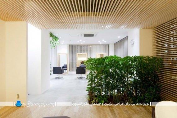 طرح جدید پارتیشن منزل با گل و گیاهان