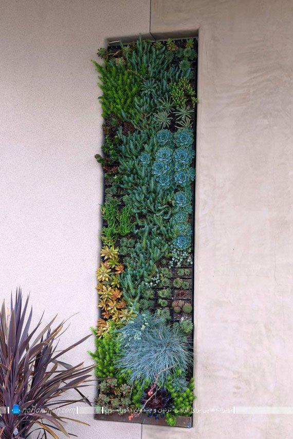 تزیین دیوارهای خارجی منزل و حیاط