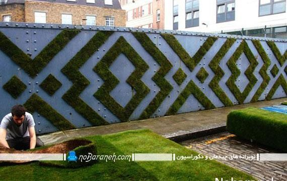 پوشش دیوار حیاط با گیاهان