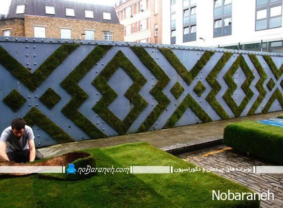 نوآوری در تزیین دیوار حیاط خانه با کاشت گیاه طبیعی