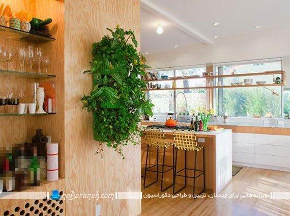 تزیین دکوراسیون خانه با گیاهان طبیعی و مصنوعی