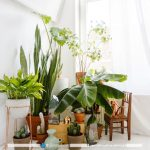 گلدان آپارتمانی تزیینی