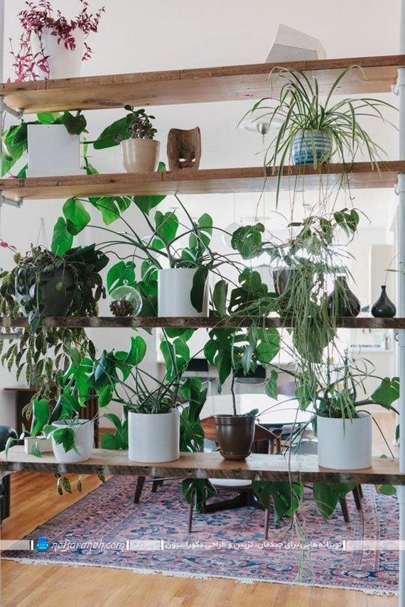 پارتیشن دکوراسیون داخلی با گیاهان