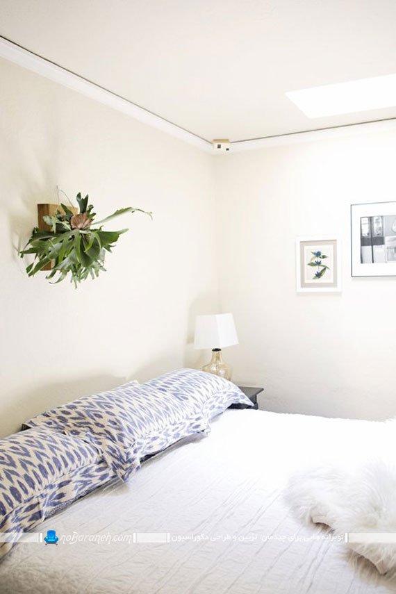 تزیین دیوارهای خانه با گلدان