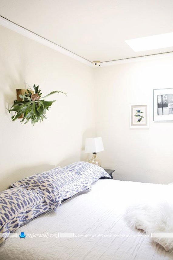 گلدان دیواری آپارتمانی