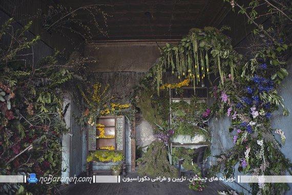 تزیین دکوراسیون داخلی اتاق متروکه آویز کردن گیاهان سبز