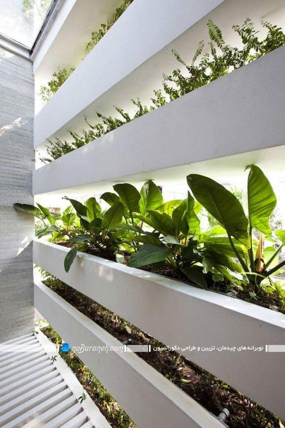 نمای طبیعی و گیاهی ساختمان