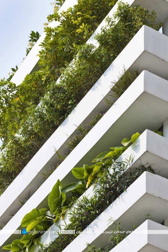 نمای گیاهی ساختمان کوچک