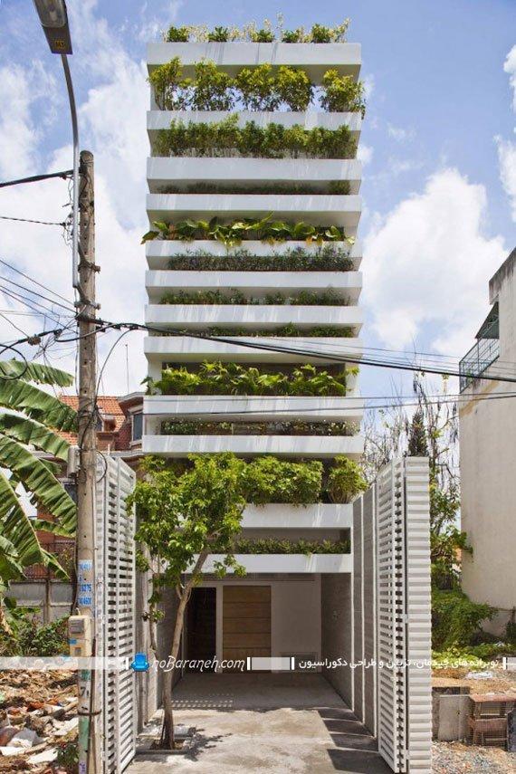 تزیین نمای ساختمان با گیاهان طبیعی