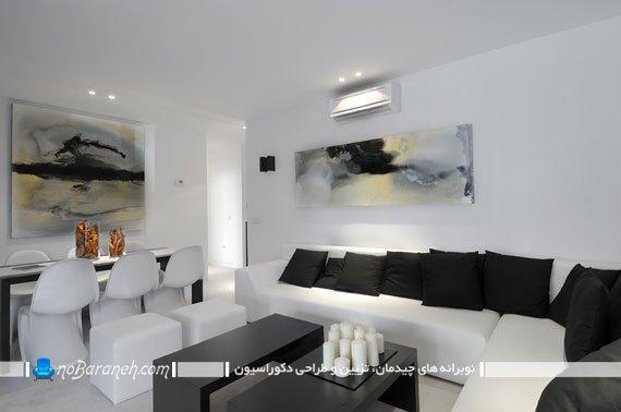 کنتراست یا تضاد رنگی با سیاه و سفید در دکوراسیون اتاق پذیرایی