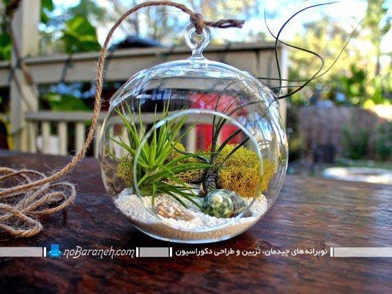 تراریوم باغ شیشه ای آویزان