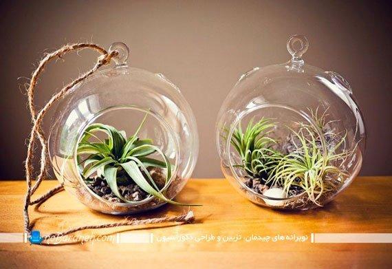 باغ شیشه ای و تراریوم خانگی