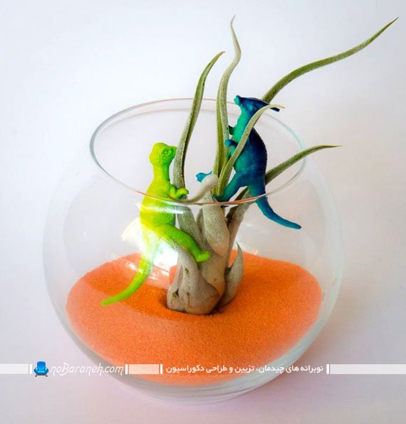 مدل تراریوم و باغ شیشه ای کوچک