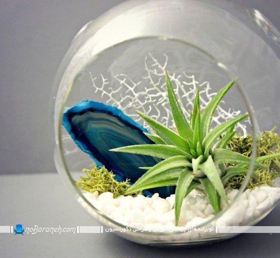 مدل تراریوم و باغ شیشه ای گرد و تزیینی