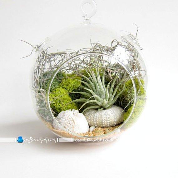 مدل تراریوم و باغ شیشه ای رومیزی