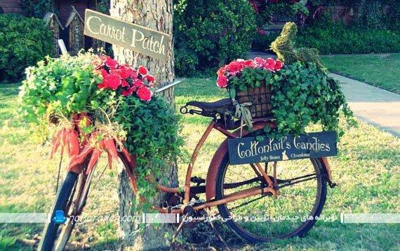 طراحی باغچه در حیاط منزل با دوچرخه های قدیمی