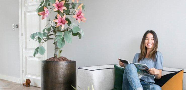 گلدان-بزرگ-دکوری-تزیینی
