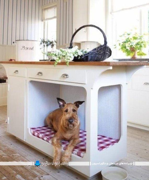 طراحی لانه سگ در کابینت آشپزخانه