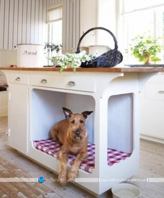 لانه خانگی حیوانات در آشپزخانه
