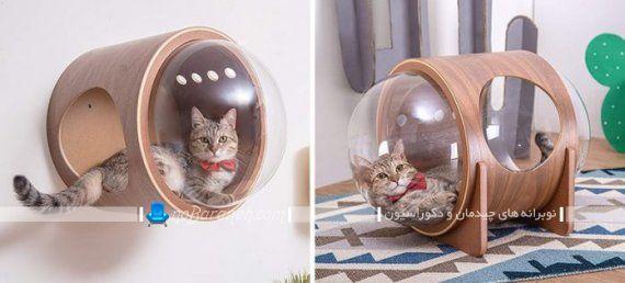 خانه ارزان قیمت گربه خانگی