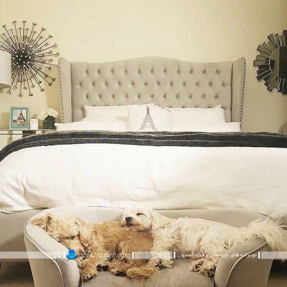 لانه و مبلمان مخصوص حیوانات خانگی