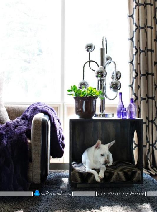 لانه حیوانات خانگی در اتاق پذیرایی