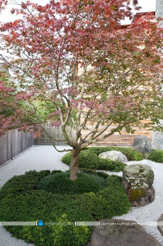 طراحی پاسیو خانگی با درخت و سنگ های تزیینی / عکس و مدل