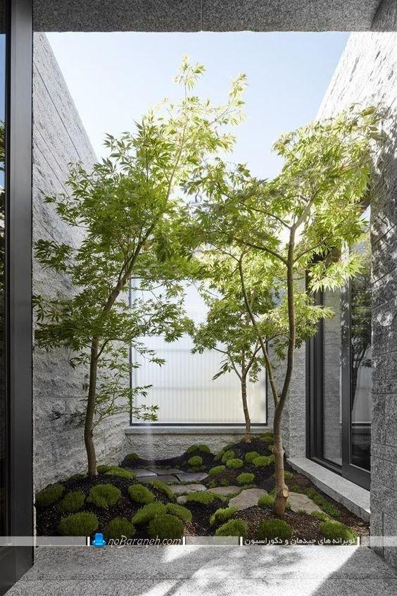 تزیین حیاط خلوت با دیوارهای دکوراتیو ، دکوراسیون حیاط خلوت ، تصاویر دکوراسیون حیاط خلوت ، تزیین حیاط خلوت اپارتمان