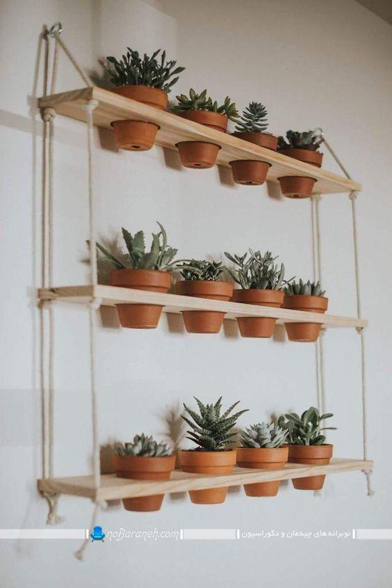 شلف دکوری و چوبی برای چیدمان گلدان های کوچک. مدل های تزیین شلف با گلدان و گیاهان