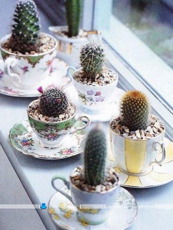 تزیین کنار پنجره با گیاهان آپارتمانی ، تزیین میز با گلدان های کوچک رومیزی شیک و مدرن