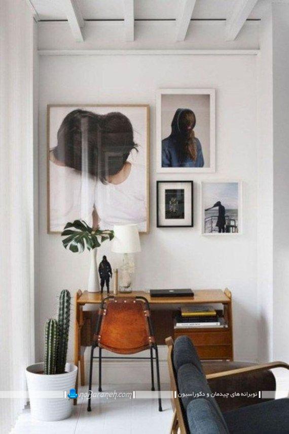 گلدان گیاه آپارتمانی کاکتوس ، گلدان بزرگ خانگی برای تزیین منزل و اتاق خواب یا پذیرایی