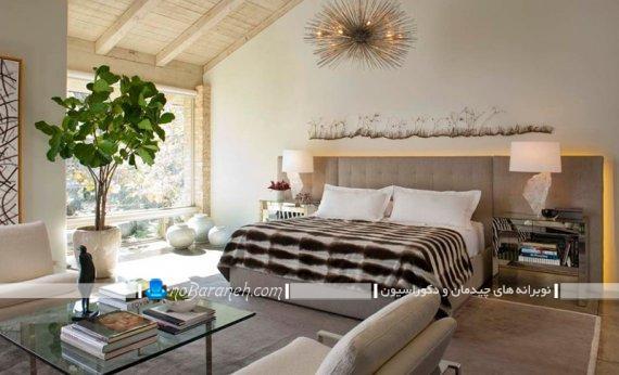 تزیین منزل با گلدان و گیاهان زیبا و لوکس تزیینی شیک مدرن. مدل های دیزاین منزل با گیاهان و گلدان طبیعی